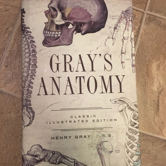 Gray's Anatomy Illustrated Edition